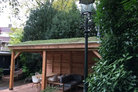 sedum dak op een Douglas veranda